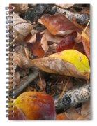Graveyard Spiral Notebook