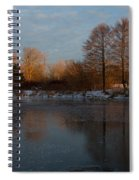 Gray And Amber - An Early Winter Morning On The Lake Shore Spiral Notebook