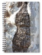 Gray Bark Abstract Spiral Notebook