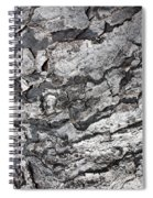 Gray Bark Spiral Notebook