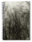 Gray Dawn Spiral Notebook