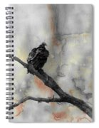 Gray Day Vulture Spiral Notebook