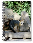 Gray Fox 4 Spiral Notebook