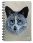 Gray Fox Head Study Spiral Notebook