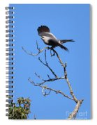 Gray Hawk Retreat Spiral Notebook