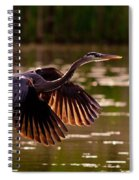 Gray Heron Spiral Notebook