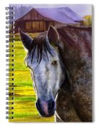 Gray Horse Spiral Notebook