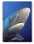 Gray Reef Shark Spiral Notebook