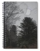 Gray Skies Over The Pines Spiral Notebook