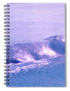 Gray Whale  Spiral Notebook