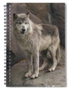 Gray Wolf On A Rock Spiral Notebook