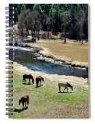 Grazing 2 Spiral Notebook