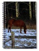 Grazing In A Washington Winter Spiral Notebook