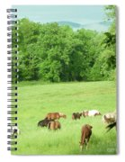 Grazing In The Morning Spiral Notebook