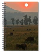 Grazing In The Smoke Spiral Notebook