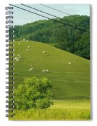 Grazing On The Mountain Side Spiral Notebook