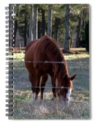 Grazing Spiral Notebook