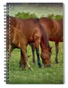 Grazing Time Spiral Notebook