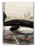Great Auk Spiral Notebook