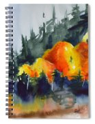 Great Balls Of Fire Spiral Notebook