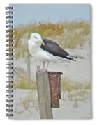 Great Black Backed Gull - Larus Marinus Spiral Notebook