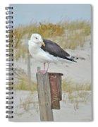 Great Black Backed Gull - Larus Marinus Spiral Notebook