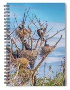 Great Black Cormorants Colony - Danube Delta Spiral Notebook