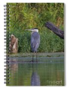 Great Blue 3 Spiral Notebook