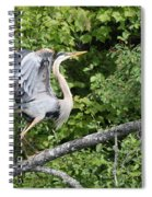 Great Blue Ballet Spiral Notebook