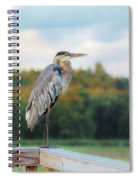 Great Blue Great View Great Meadows Spiral Notebook