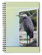 Great Blue Heron - Red-cyan 3d Glasses Required Spiral Notebook
