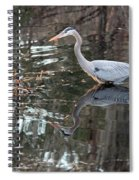 Great Blue Heron And Reflection IIi Spiral Notebook