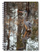 Great Blue Heron And Reflection Spiral Notebook