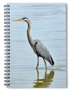 Great Blue Heron In River Spiral Notebook