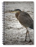 Great Blue Heron In The Snow Spiral Notebook