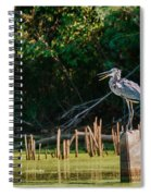 Great Blue Heron Mouth Spiral Notebook