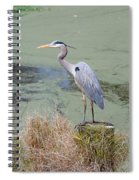 Great Blue Heron Near Pond Spiral Notebook