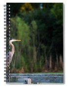 Great Blue Heron On A Handrail Spiral Notebook