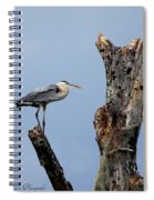 Great Blue Heron Perched Spiral Notebook