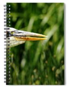 Great Blue Heron Portrait Spiral Notebook