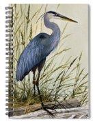 Great Blue Heron Splendor Spiral Notebook