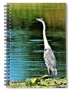 Great Blue Heron Standing Tall Spiral Notebook