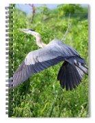 Great Blue Heron Takeoff Spiral Notebook