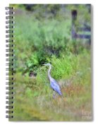 Great Blue Heron Visitor Spiral Notebook