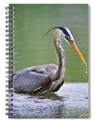 Great Blue Heron Wading Spiral Notebook