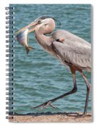 Great Blue Heron Walking With Fish #4 Spiral Notebook