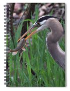Great Blue Heron With His Catch Spiral Notebook