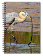 Great Blue Heron Wrestles A Snake Spiral Notebook