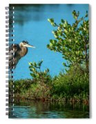 Great Blue On One Leg Spiral Notebook