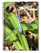 Great Blue Skimmer Spiral Notebook